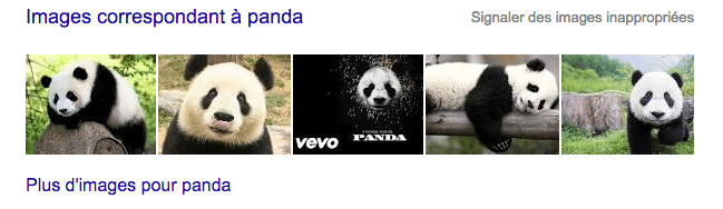 apparaitre sur google en référençant des images