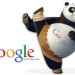 Google Panda :  un algorithme qui vous veut du bien !